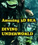 Click to view Amazing 3D Sea -  Diving Underworld 1.2 screenshot